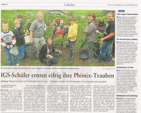 Zeitungsartikel Weinberg